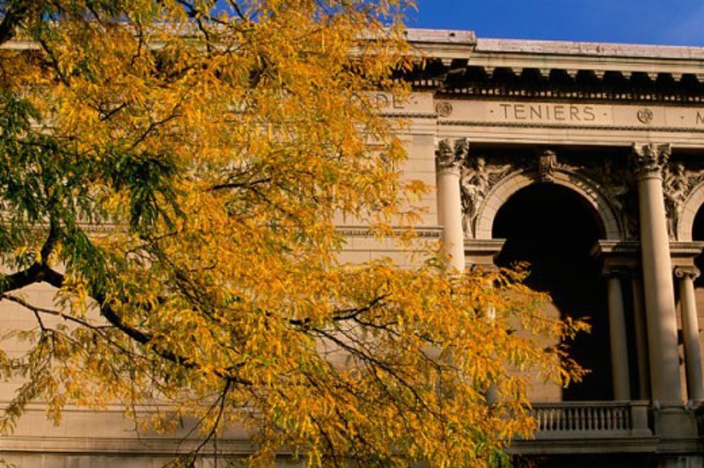 Stock Photo: 1561-789 Art Institute of Chicago Chicago Illinois, USA