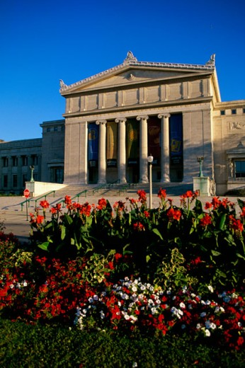 Field Museum of Natural History Chicago Illinois, USA : Stock Photo