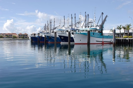 Stock Photo: 1565-149 Boats docked in a harbor, Port Lincoln, Australia