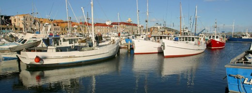 Stock Photo: 1565-170 Boats docked in a harbor, Constitution Dock, Hobart, Australia