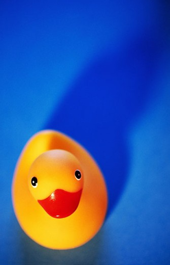 Stock Photo: 1566-0100619 Rubber duck