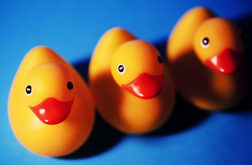 Stock Photo: 1566-0100620 Three rubber ducks