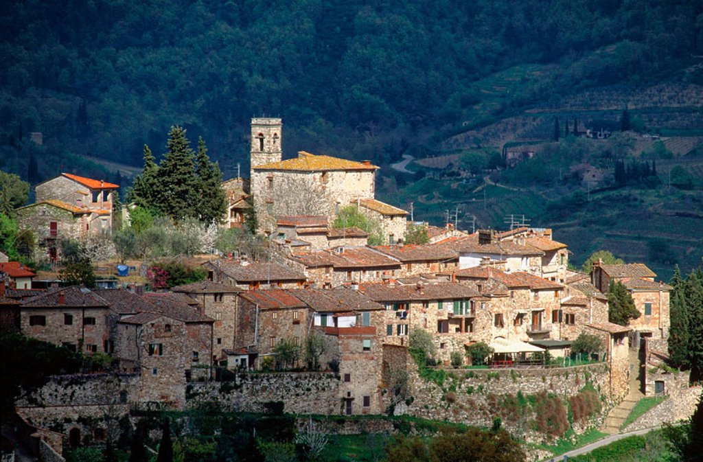Montefiorale. Chianti. Tuscany. Italy : Stock Photo