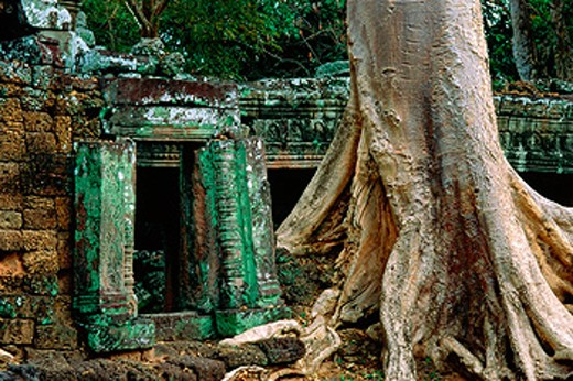 Stock Photo: 1566-0105658 Ruins of Preah Khan temple, complex of Angkor Wat. Angkor. Cambodia