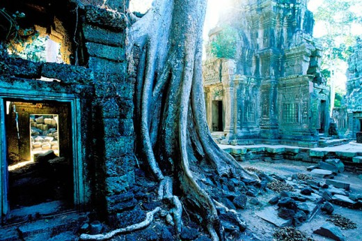 Stock Photo: 1566-0106645 Ta Prohm temple, complex of Angkor Wat. Angkor. Cambodia
