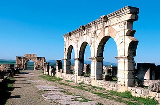 Stock Photo: 1566-0106765 Volubilis. Morocco