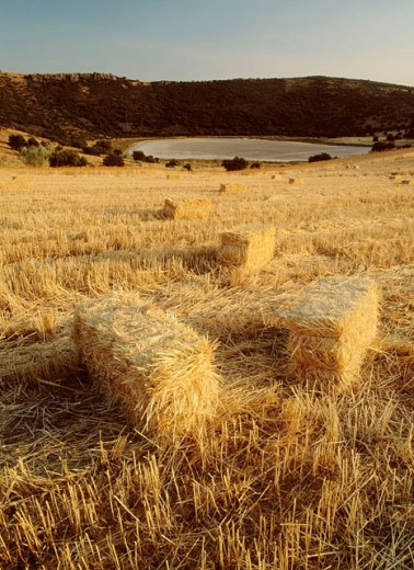 Stock Photo: 1566-0108542 Straw bales. La Posadilla Crater. Calatrava. Ciudad Real province. Castilla-La Mancha. Spain