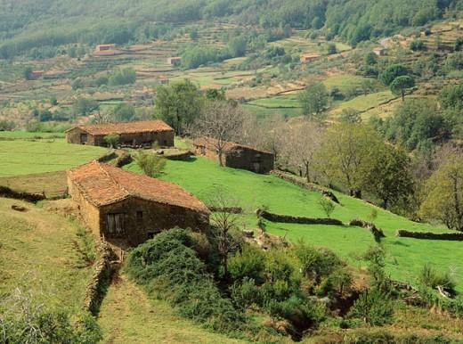 Stock Photo: 1566-0108575 Guijo. La Vera. Caceres province. Extremadura. Spain