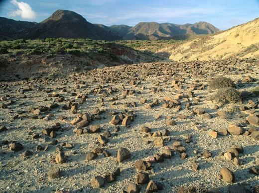 Stock Photo: 1566-0108707 El Barronal. Cabo de Gata. Almeria province. Andalucia. Spain