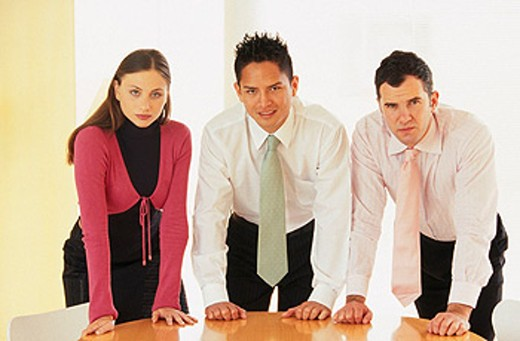 Stock Photo: 1566-0113941 Working team