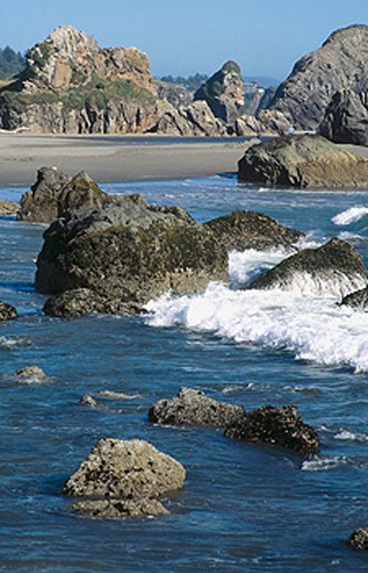 Stock Photo: 1566-0120042 Rocky shoreline at low tide. Harris Beach State Park. Oregon, USA