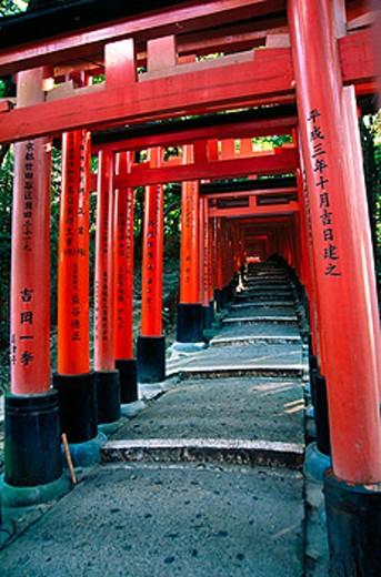 Row of Torii gates following path at Fushimi Inari Taisha Shrine. Kyoto. Japan : Stock Photo