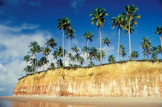Stock Photo: 1566-0120943 Tropical beach with coconut palm-trees: Barra do Cahy beach, where the Brazilian indians and the Portuguese colonizers first met. Cumuruxatiba, Bahia. Brazil
