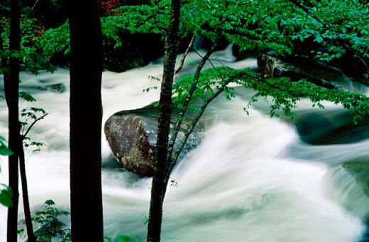 Stock Photo: 1566-0122588 Little River after heavy rain. Great Smoky Mountains National Park. Tennessee. USA