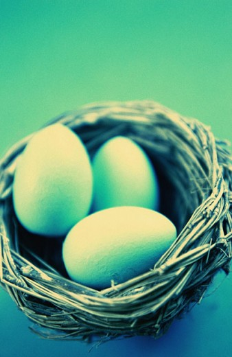 Stock Photo: 1566-0123357 Bird nest