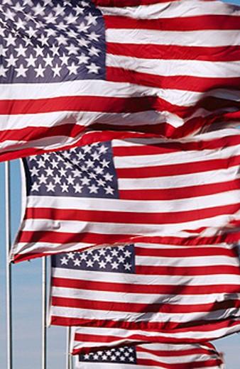 Stock Photo: 1566-0124002 United States flags. Tucson. Arizona. USA