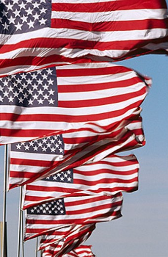 Stock Photo: 1566-0124003 American flags