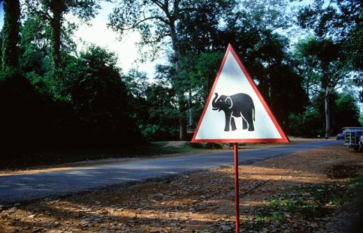 Road signal  in a road of Angkor. Siem Reap. Cambodia : Stock Photo