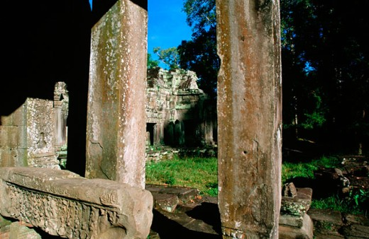 Ta Prohm Temple. Angkor Wat. Cambodia : Stock Photo