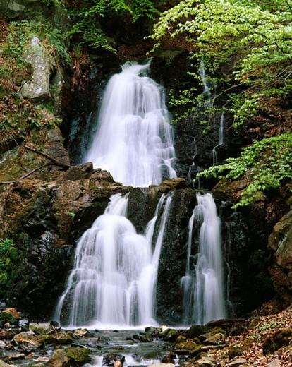 Stock Photo: 1566-0135711 Waterfall in Forsakar . Skane. Sweden