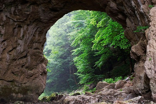 Veliki Naravni Most natural bridge. Rakov Skocjan Nature Reserve. Slovenia : Stock Photo