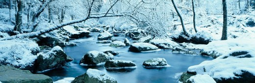 Hoegne River. Ardennes. Belgium : Stock Photo