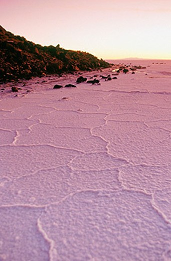 Uyuni salt flat at sunrise, near Isla de Pescadores. Bolivia : Stock Photo