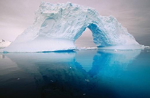 Iceberg. Petermann Island. Antarctic Peninsula : Stock Photo