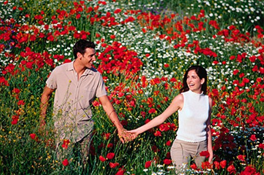 Stock Photo: 1566-014063 Couple in poppy field