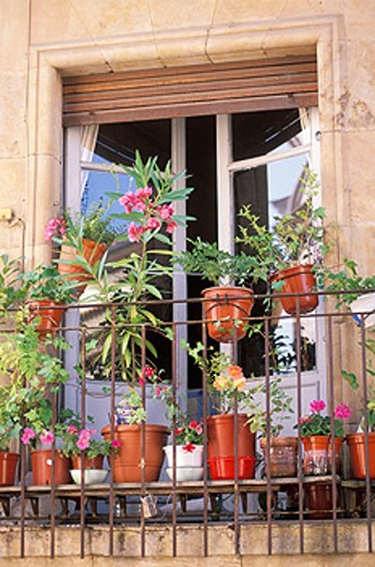 Balcony with flower pots. Salamanca. Spain : Stock Photo