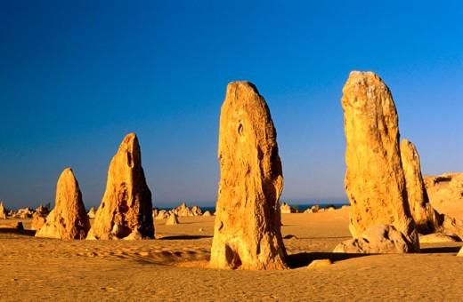 Stock Photo: 1566-0148457 Limestone. Nambung National Park. Western Australia