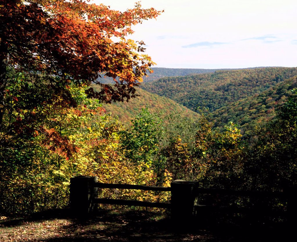 Stock Photo: 1566-0150647 Monroe Run vista in autumn. Savage River State Forest. Western Maryland. USA
