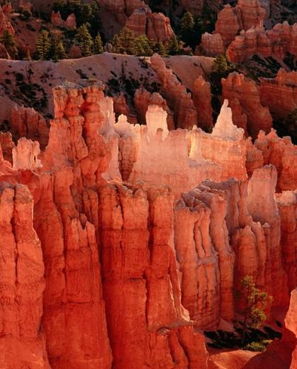 Stock Photo: 1566-0150669 ´Hoodoos´ (afternoon October). Bryce Canyon National Park. Utah. USA