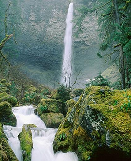 Watson Falls and Watson Creek. Umpqua National Forest. Douglas County. Oregon. USA : Stock Photo
