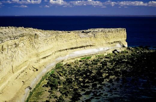 Punta Buenos Aires. Valdés Peninsula. Chubut province. Argentina : Stock Photo