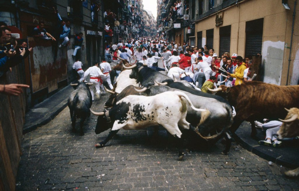Stock Photo: 1566-0152614 Running of the bulls. San Fermin. Pamplona. Navarre. Spain
