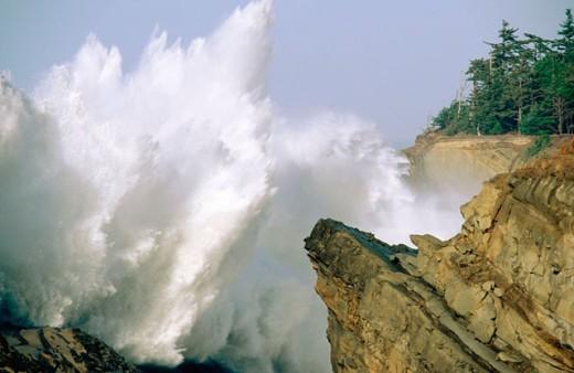 Crashing surf on rugged coastline. Shore Acres State Park. Oregon. USA : Stock Photo