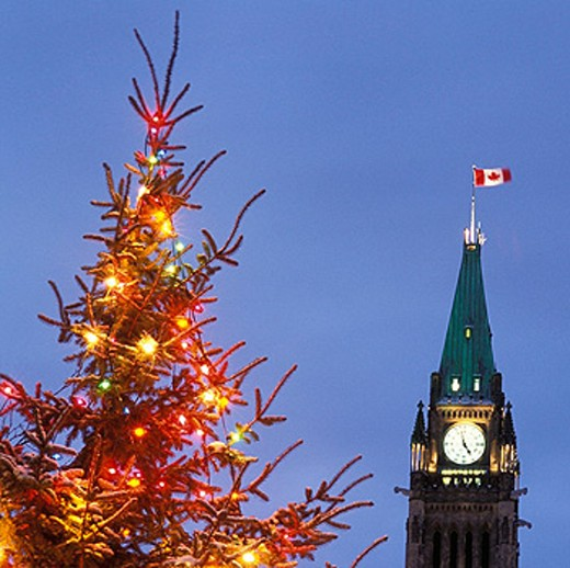 Peace Tower of Canadian Parliament building and Christmas tree. Ottawa. Ontario. Canada : Stock Photo