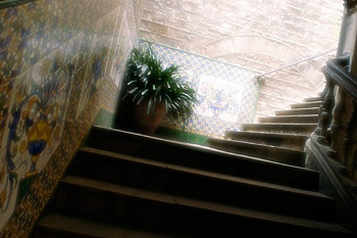 Stock Photo: 1566-0164931 Stairs, flower pot and decorated tiles at palace. Barcelona. Spain