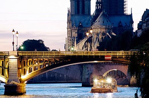 Notre Dame cathedral and Pont de l´Archevêque at sunset. Paris. France : Stock Photo
