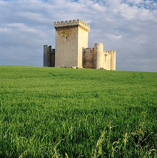 Stock Photo: 1566-0166099 Castle (built 15th century). Villalonso. Zamora province, Spain