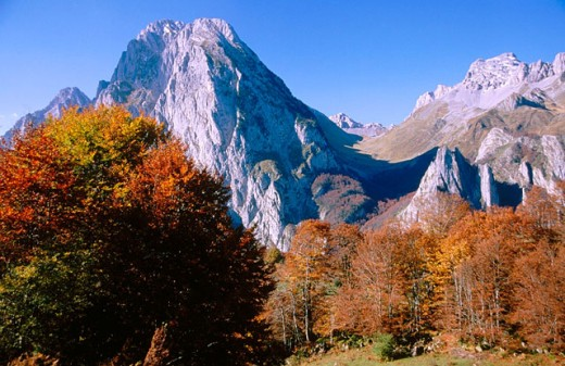 Mount Billare and Mount Anie, autumn colors. Lescun. France : Stock Photo