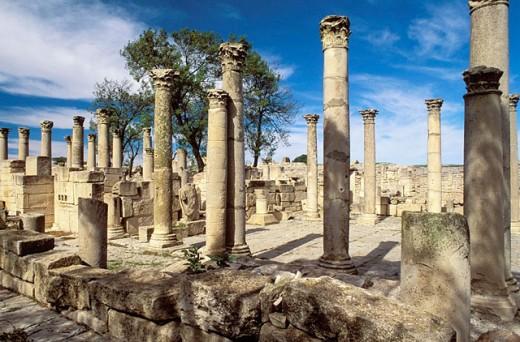 ´Schola des Juvenes´ (young boys´ school), ruins of old Roman city of Mactaris (Makthar). Tunisia : Stock Photo