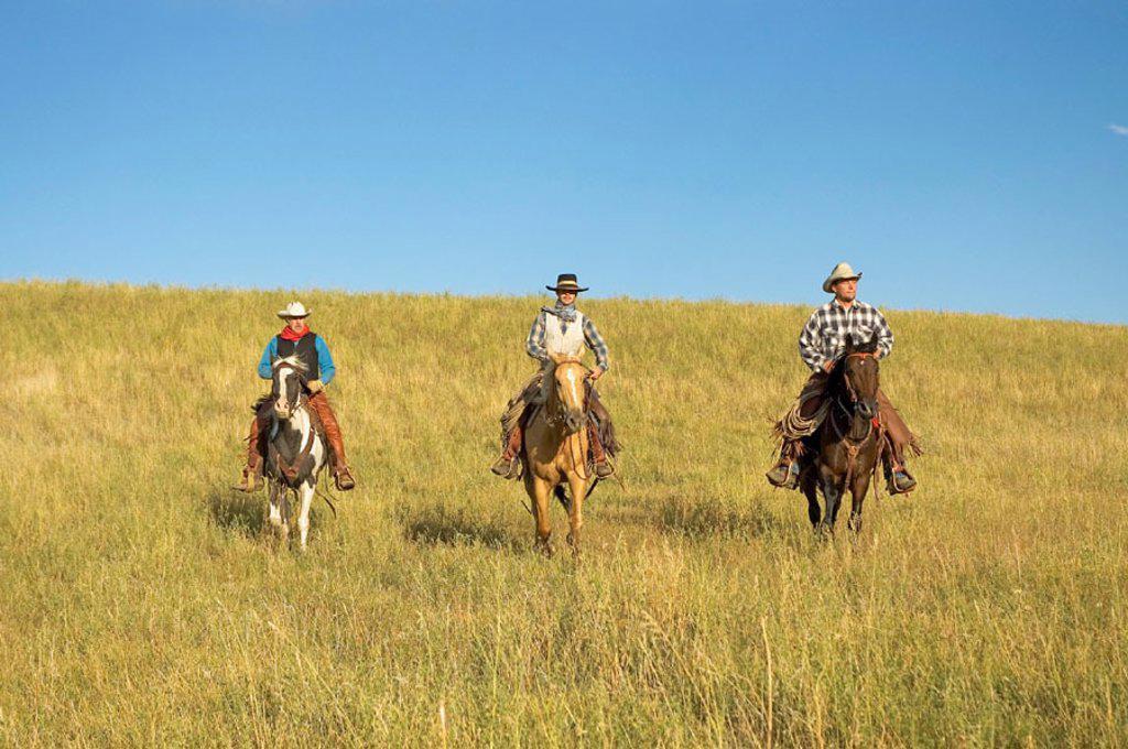 Stock Photo: 1566-0170783 Cowboys riding the range. Montana. USA