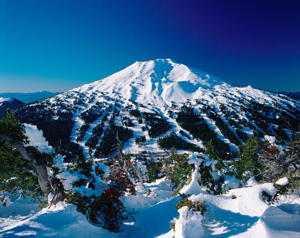 Mount Bachelor Ski Area. Deschutes National Forest. Bend. Oregon. USA : Stock Photo