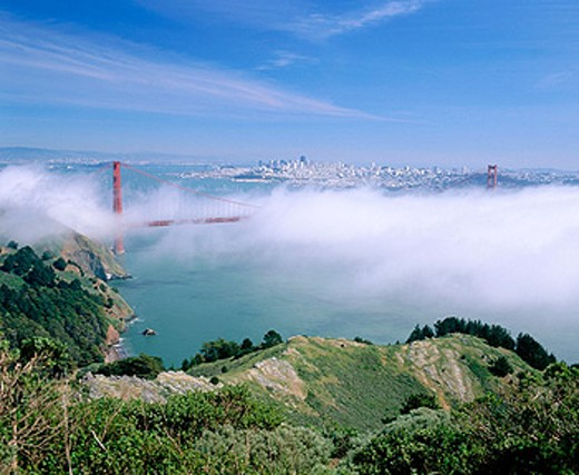 Stock Photo: 1566-0172224 Golden Gate bridge and San Francisco at background. View from Golden Gate National Recreation Area. California. USA