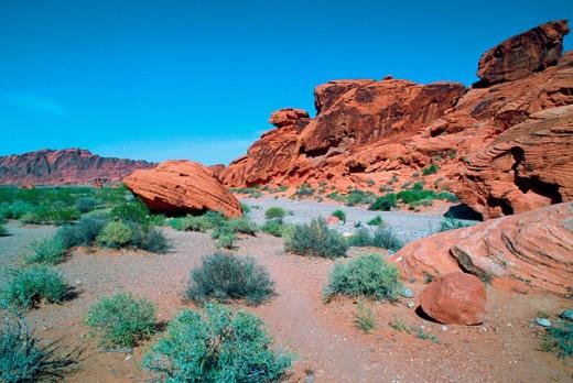Nevada desert. The Valley of Fire. Nevada. USA. : Stock Photo
