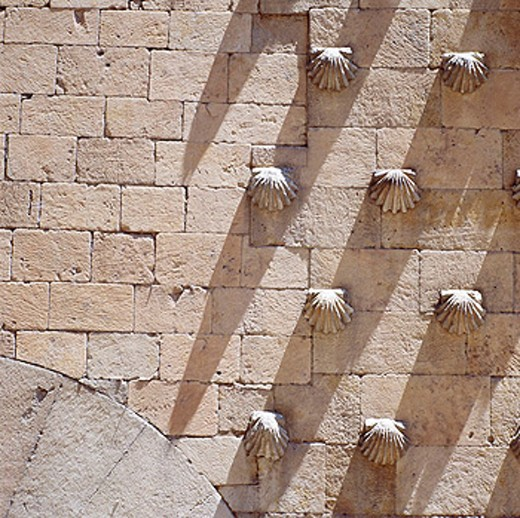 Casa de las Conchas. Salamanca. Spain : Stock Photo