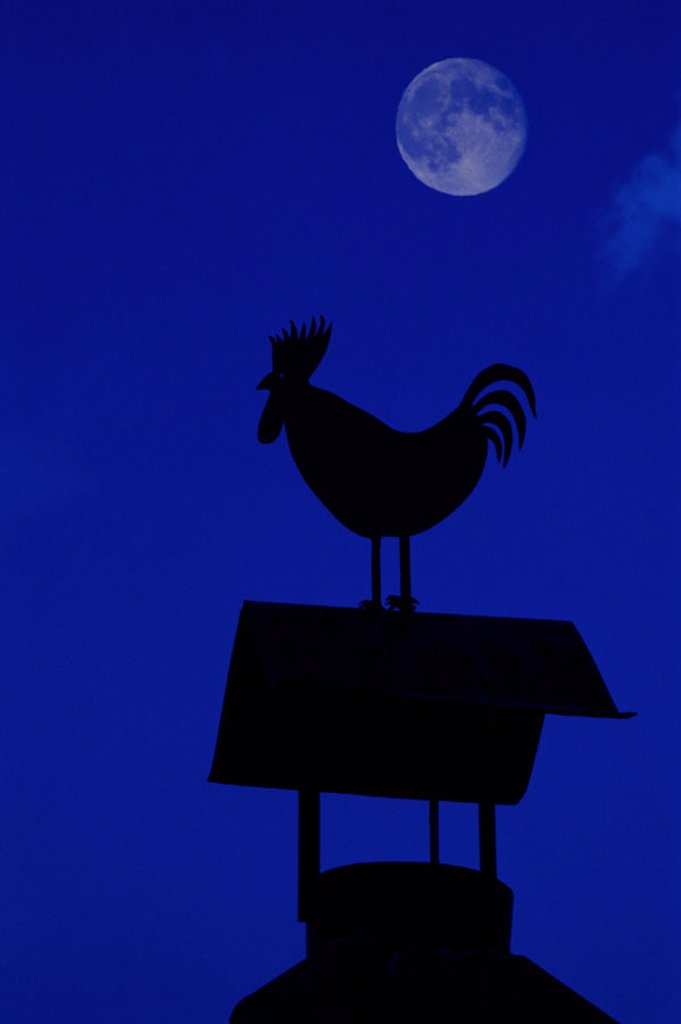 Stock Photo: 1566-0179593 Wheater vane and moon