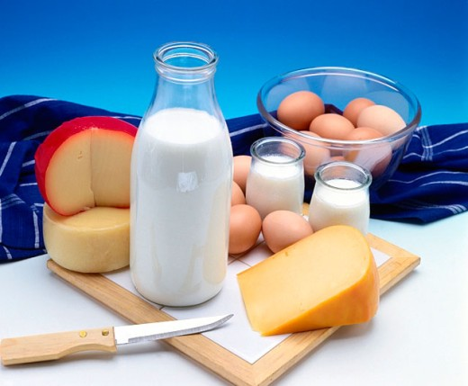 Stock Photo: 1566-0180904 Dairy products